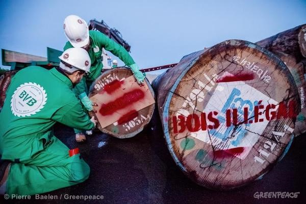 Illegal Timber Protest at Caen Port in France