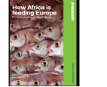 How Africa is feeding Europe