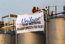 Unilever's 'Monkey Business' - Greenpeace swings into action