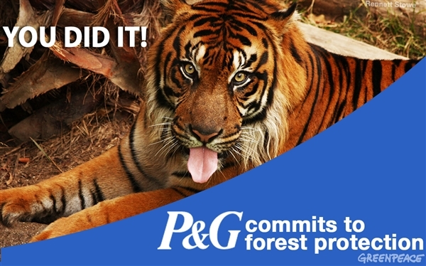 P&G Commits to No Deforestation