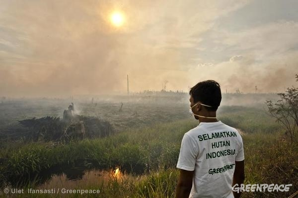 Documenting Forest Fires in Sumatra. 06/23/2013 © Ulet Ifansasti / Greenpeace