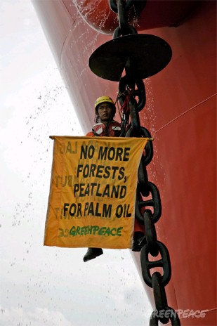 Indonesian Greenpeace activist Romadon Canarisla from the MY Esperanza climbs the anchor chain of the tanker 'Gran Couva' and braves the crew's water hoses. The tanker is carrying 27,000 metric tonnes of crude palm oil for the Wilmar company destinati...
