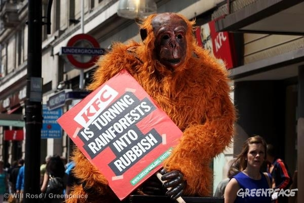 Orangutans taking action outside KFC in London