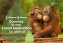 Johnson & Johnson: The path to 'No More Tears' in Indonesian rainforests