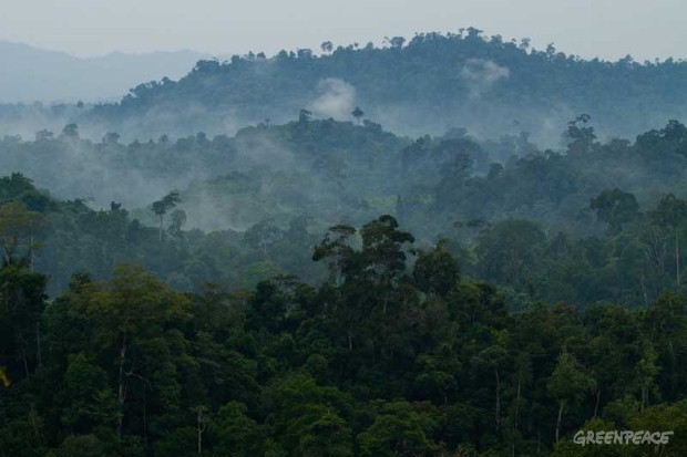 Meratus Mountain in Kalimantan