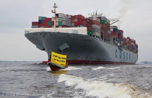 Protest against Whale Meat in Hamburg.  © Joerg Modrow / Greenpeace