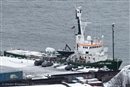Dutch request maritime court to order release of Arctic 30