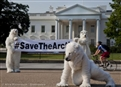 Greenpeace challenges US approval for Shell's Arctic oil drilling
