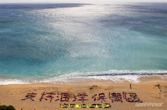 Human beach art calls for marine reserves in Taiwan