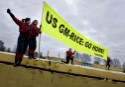 Greenpeace activists protest on a barge containing