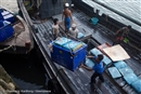 Are there human rights abuses in your seafood?