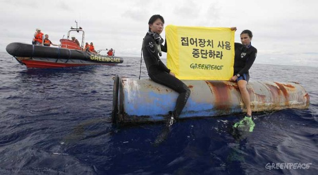 Greenpeace Palau Joint Enforcement