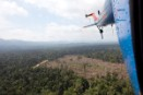 Fresh evidence of Sinar Mas destroying rainforest and peatlands