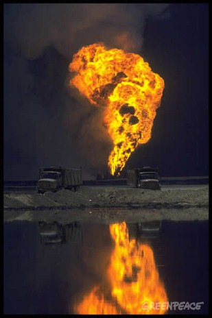 Greenpeace survey of Gulf War oil pollution in Kuwait.