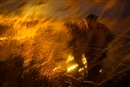 Here's why I'm celebrating Russia's fire ban