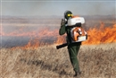 Wildfires in Russia: much worse than you could imagine