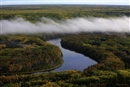 The Forest Stewardship Council can help protect Canada's Boreal Intact Forest Landscapes