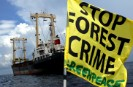 Illegal log vessel expelled in Indonesia