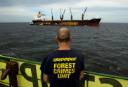A Greenpeace campaigner watches as plywood