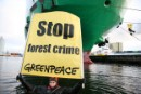 Greenpeace blocks export of forest crimes