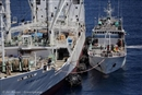 Creating a debate on sustainable tuna fishing is the first step towards change