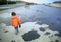 A Greenpeace activist inspects the spilled