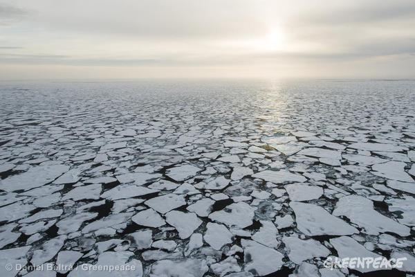 Aerial view of sea ice in the Arctic Ocean. Greenpeace is in the Arctic to document the lowest sea ice level on record. 09/13/2012 © Daniel Beltrá / Greenpeace