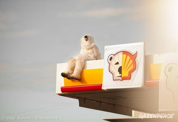 polar bear on a shell petrol station