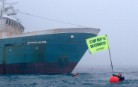 Greenpeace activists get in the way of the