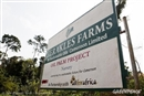 "Herakles Farms: ""Investing in Africa"""