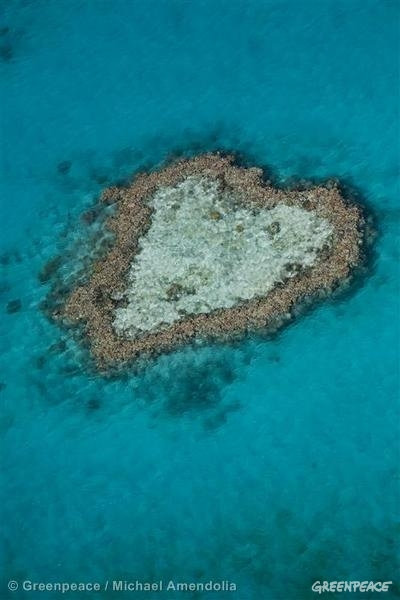 Aerial view of the Great Barrier reef. Heart-shaped reef.