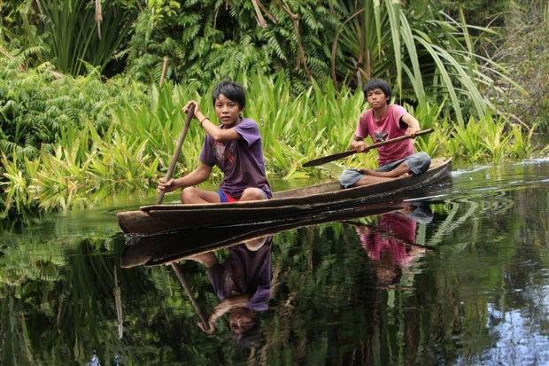 Boys in Indonesian Forest