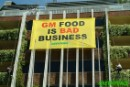 Global food industry leaders must listen to their consumers - Don't sell GE food!
