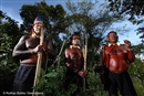 UN report highlights the challenges Indigenous People in Brazil face to protect their land