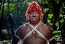 Greenpeace supports Indigenous Peoples' Rights: Here's why