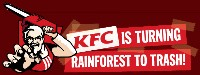 KFC is turning rainforest to trash