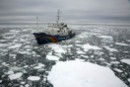 Greenpeace ready to tow stricken whaling ship