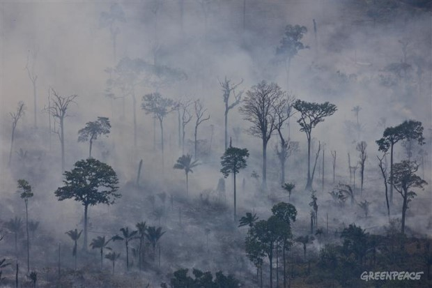 Smoke from Forest Fires in the Amazon