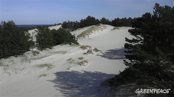 Part of the chosen site at Lubiatowo is a protected Natura2000 area, with free-flowing sand dunes and a low-growing pine forest – a uniquely beautiful piece of nature.