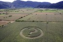 Mexican Crop Circle asks the question
