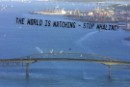 Greenpeace put out the message to the delegates from the International Whaling Commission