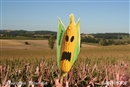EU bows to US pressure to open door to new GMOs