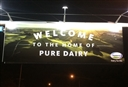 Pure Dairy. Pure Fiction - A Parody