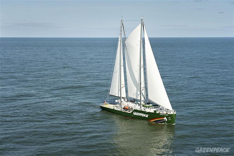 Rainbow Warrior under sail