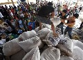 Seeds Distribution for Typhoon Affected Farmers in The Philippine