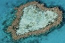Heart Shaped Reef