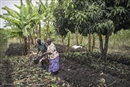 Making the case for ecological farming in Africa