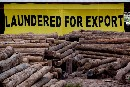 Europe failing to use legal armoury against illegal logging