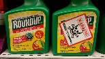 Glyphosate licence renewal suspended in light of health concerns