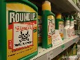 Greenpeace comment on EU glyphosate decision